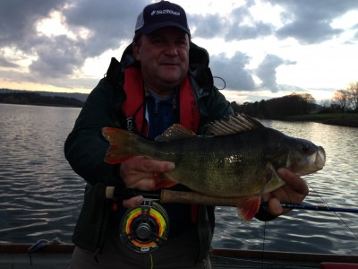 Rich Hart's Record IGFA fly tippet 3:10 Chew Perch