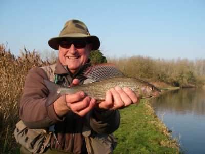 A cracking River Test Grayling