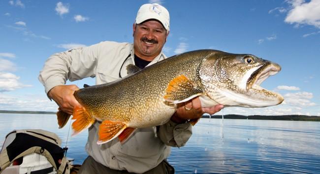 Massive Lake Char caught in the Yukon, Canada